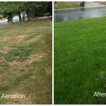 PrimaDopo l'irrigazione